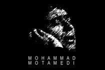 mohammad-motamedi-image